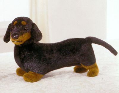 s-dachshund.jpg